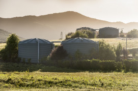 Winter 2020 - Fieldays Deals!